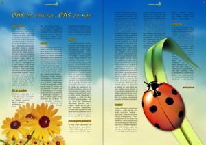 Klavdija Širok, oblikovanje